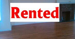Brand new Fantastic Studios for rent